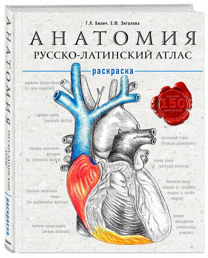 Анатомія атлас-розмальовка