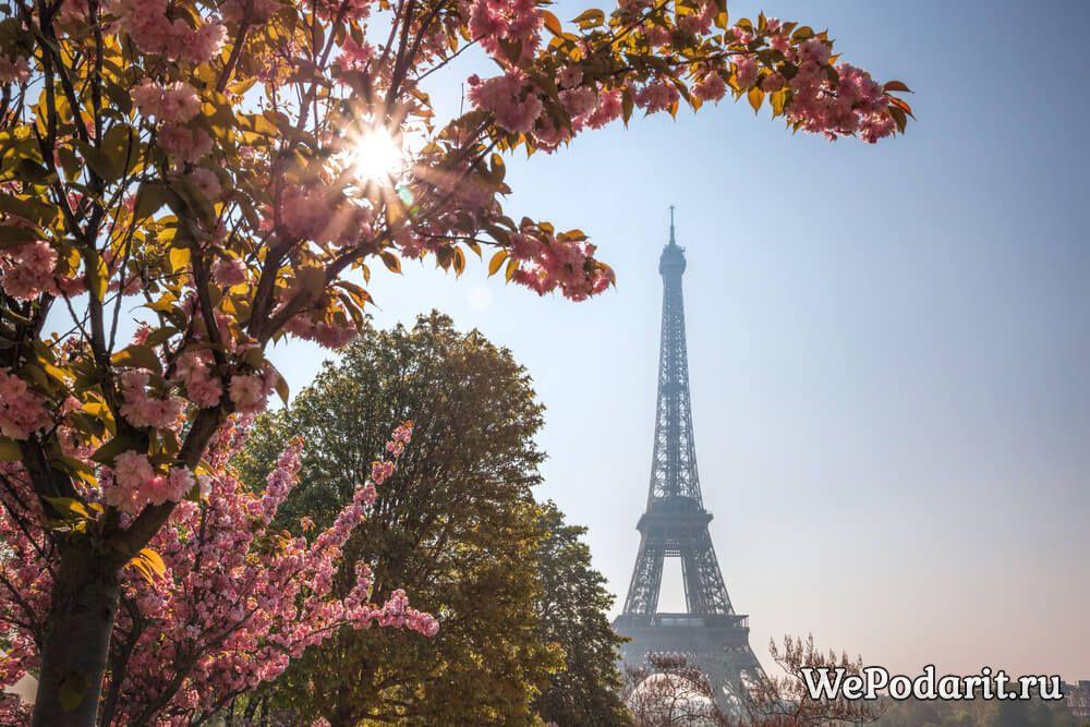 Ейфелева вежа в Парижі навесні